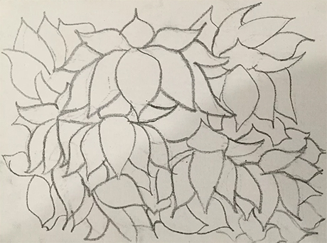 A pencil drawing of lotus flowers on paper