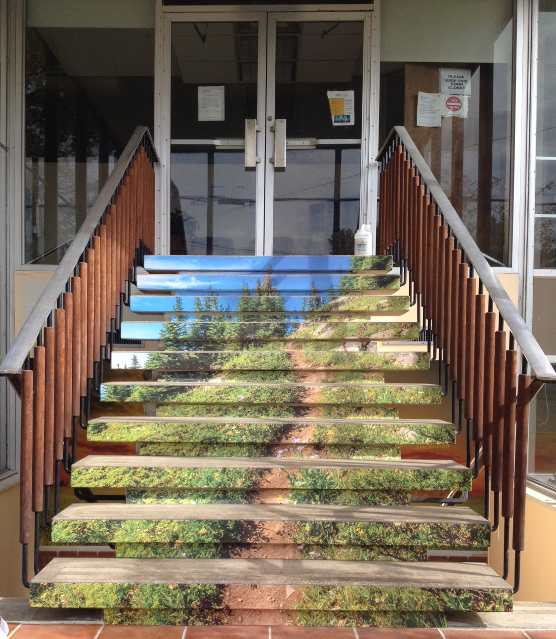The front steps leading up the entrance at the new CHOICE building are covered in green grass